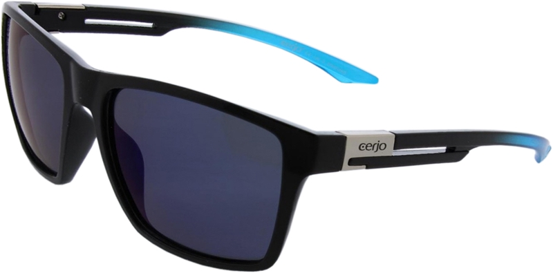 252.001 Sunglasses polarized