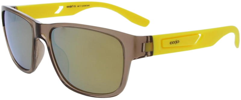 252.401 Sunglasses polarized