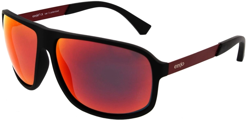 253.001 Sunglasses polarized