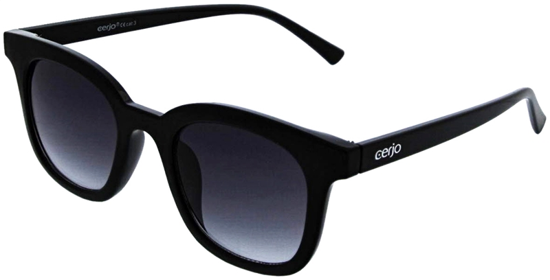 040.201 Sunglasses