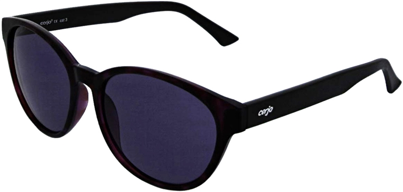 040.301 Sunglasses