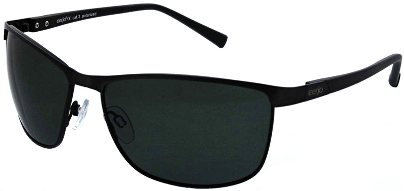 229.062 Sunglasses polarized