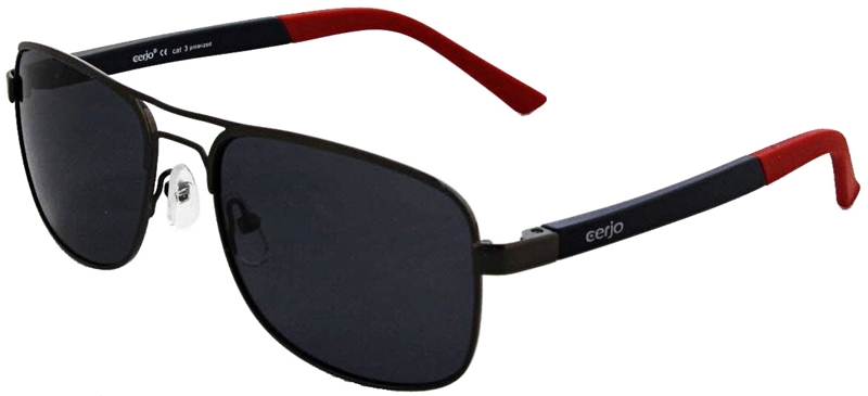 229.481 Sunglasses polarized