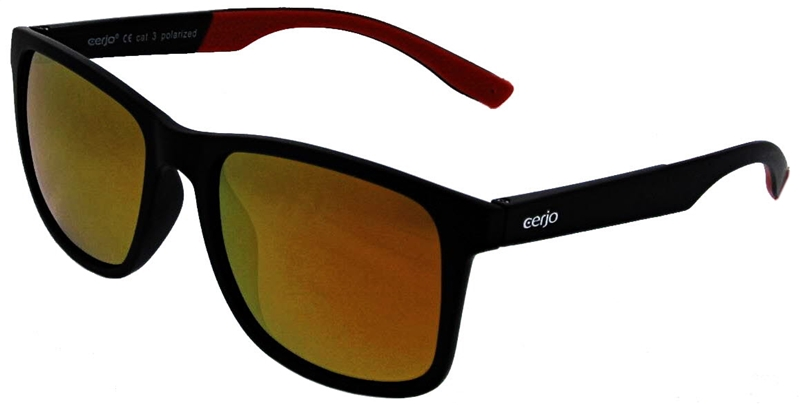 252.012 Sunglasses polarized