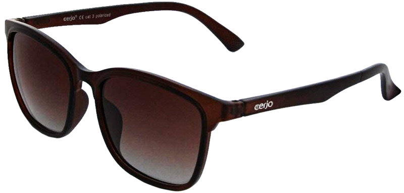 253.062 Sunglasses polarized