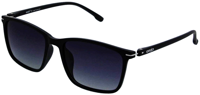 253.221 Sunglasses polarized