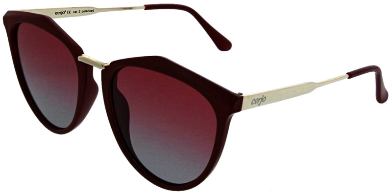 220.021 Sunglasses polarized