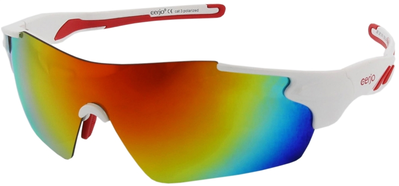 267.081 Sunglasses polarized