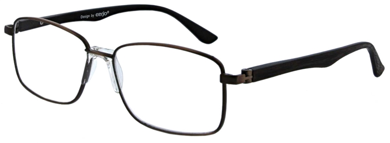 015.711 Reading glasses 1.00