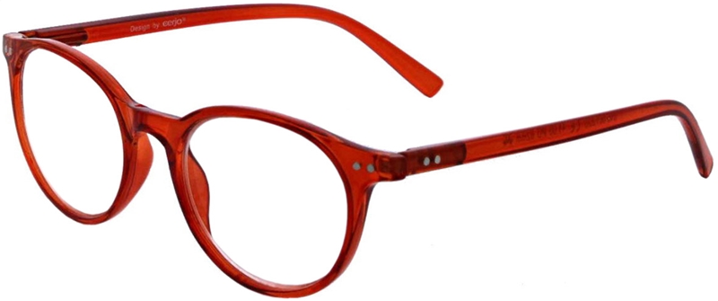 016.061 Reading glasses 1.00