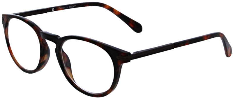 016.081 Reading glasses 1.00
