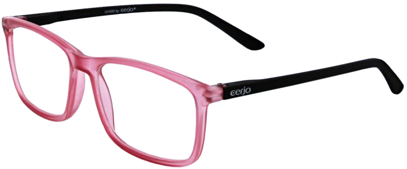 016.491 Reading glasses 1.00