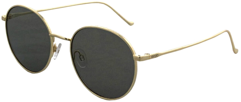 229.421 Sunglasses polarized